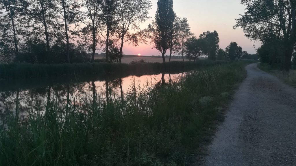 caminando por el Camino